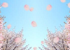 お花見だけじゃない!桜にはハッピーになれる要素がいっぱいだったよ♪