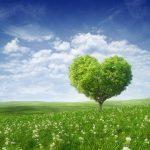 幸せになりたいならセロトニンを増やすべし!~増やし方の記事まとめておきました♪